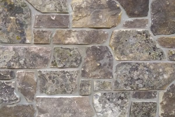 Swatch of Mossy Real Stone Veneer